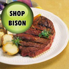 bison-meat