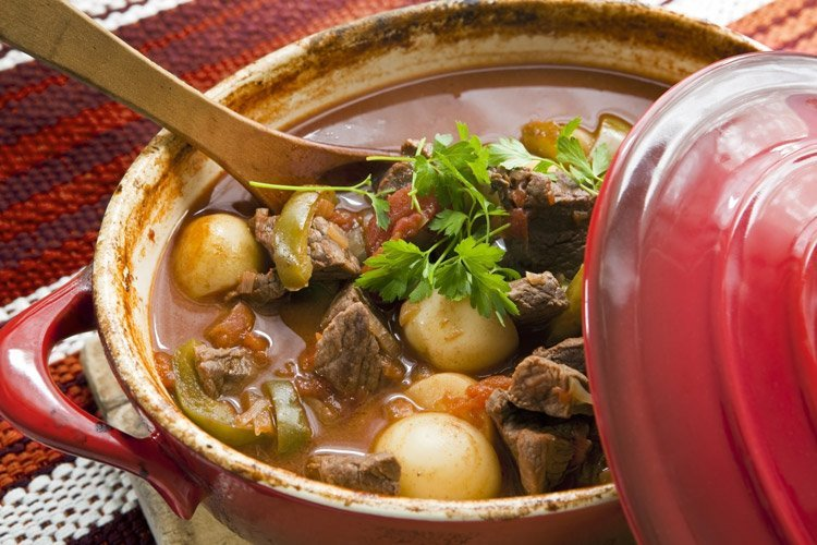 classic bison stew recipe